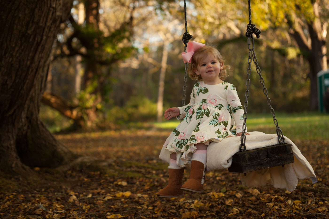 Unedited Photo of Girl In Swing